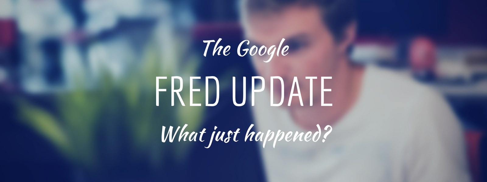 Google Fred Update: What just happened?